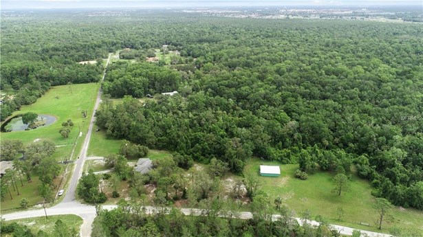 251 Hargrove , Kissimmee, FL - USA (photo 3)