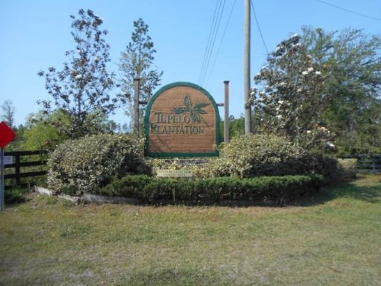 33145 Wiregrass , Callahan, FL - USA (photo 3)