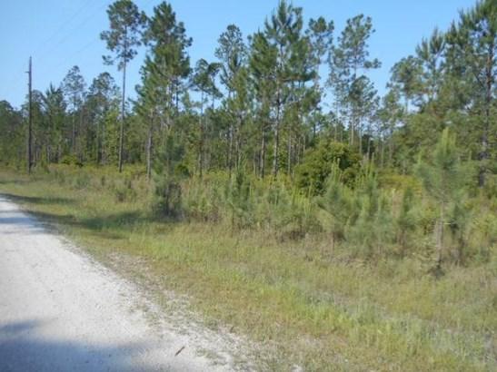 33145 Wiregrass , Callahan, FL - USA (photo 4)