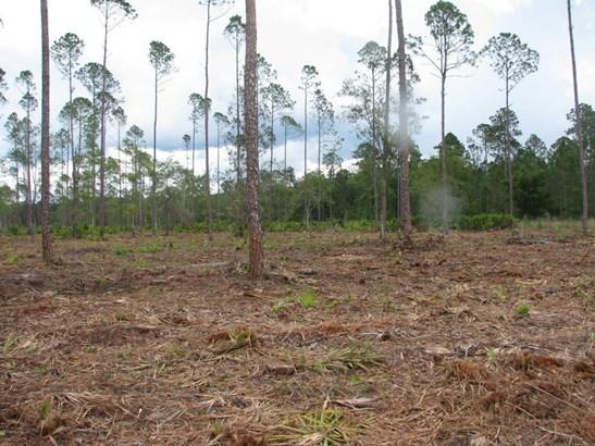 0 Woods 1217 1217, Callahan, FL - USA (photo 1)