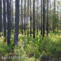 Lot 1 Ingle , Bryceville, FL - USA (photo 2)