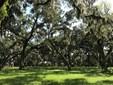 140 Cedar Run , Fleming Island, FL - USA (photo 1)