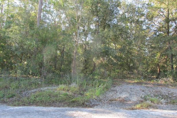 Lot 85 73rd , Starke, FL - USA (photo 3)