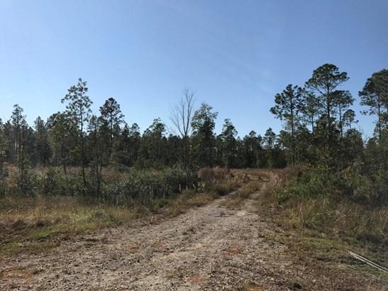 0 Mitigation , Callahan, FL - USA (photo 4)