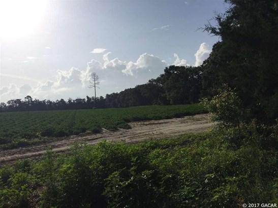 8713 226th , Alachua, FL - USA (photo 3)