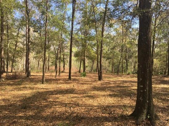 1539 Peters Creek , Green Cove Springs, FL - USA (photo 4)
