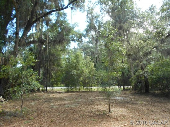 120 Evans , Micanopy, FL - USA (photo 3)