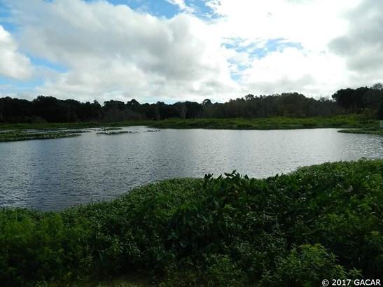 106 Little Orange Lake , Hawthorne, FL - USA (photo 3)