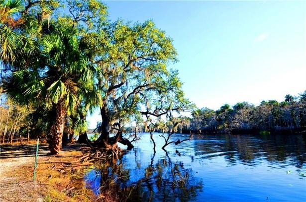 Gee Whiz , Osteen, FL - USA (photo 5)