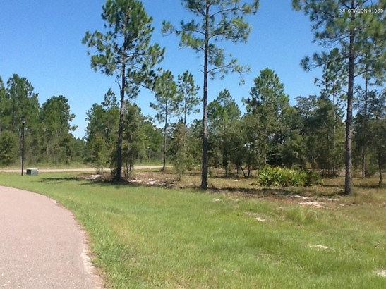 Lot 102 Bullock Bluff , Bryceville, FL - USA (photo 1)