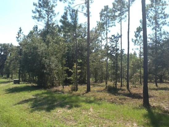 Lot 102 Bullock Bluff , Bryceville, FL - USA (photo 2)