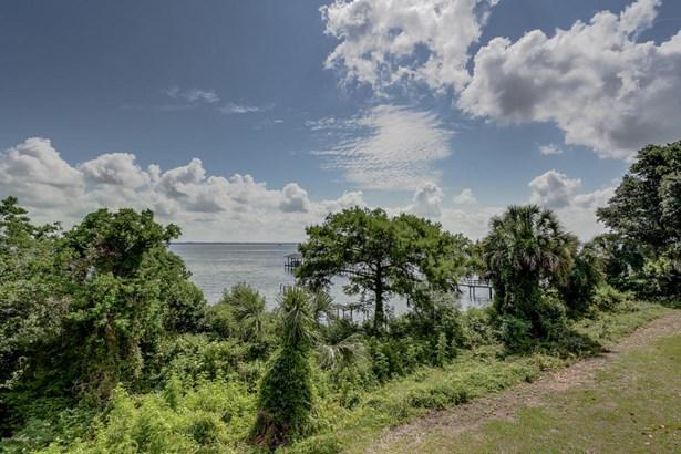 1 Walburg , Green Cove Springs, FL - USA (photo 3)