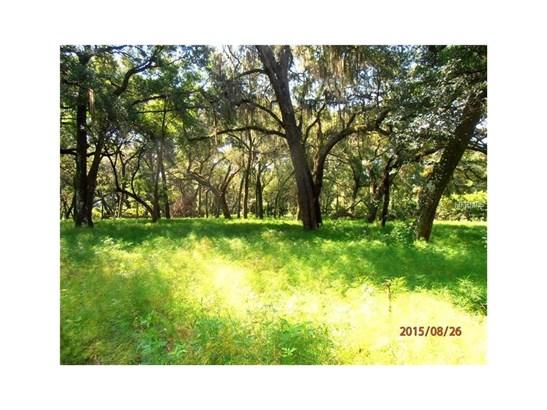 2555 Place Pond , De Leon Springs, FL - USA (photo 5)