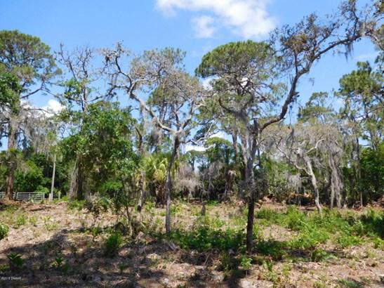0 Osteen Parcel D , Oak Hill, FL - USA (photo 5)