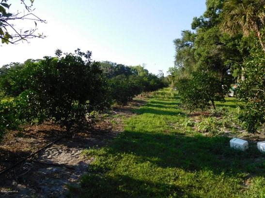 155 Elleanore , Oak Hill, FL - USA (photo 3)