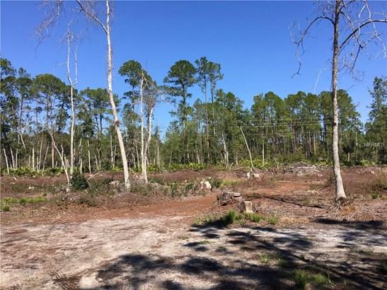 225 Plumosa , Georgetown, FL - USA (photo 2)