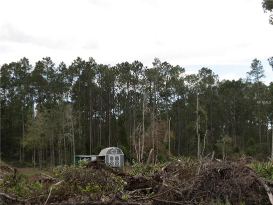 225 Plumosa , Georgetown, FL - USA (photo 3)