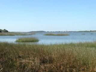 Standish Dr , St. Augustine, FL - USA (photo 2)