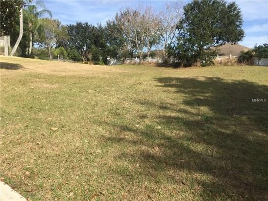 0000 Magnolia Ending , Mount Dora, FL - USA (photo 1)