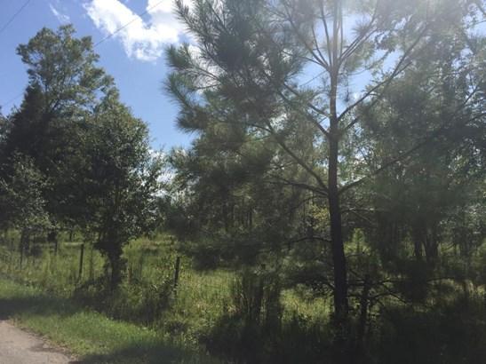 0 Beaver , Baldwin, FL - USA (photo 2)
