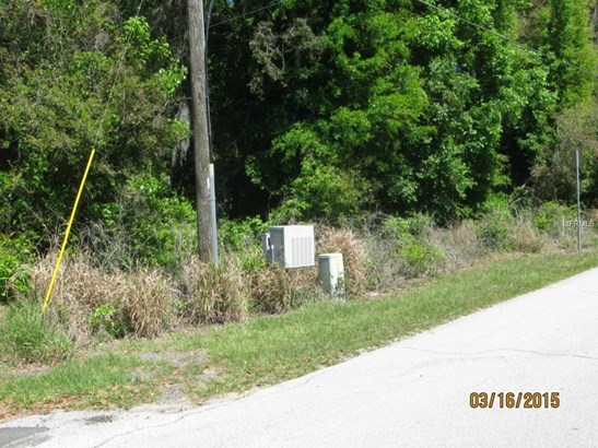 0 Lane Park , Tavares, FL - USA (photo 2)