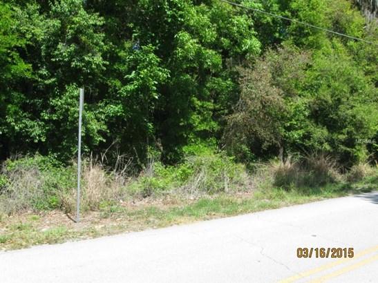 0 Lane Park , Tavares, FL - USA (photo 3)
