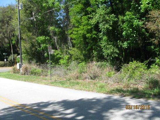 0 Lane Park , Tavares, FL - USA (photo 4)