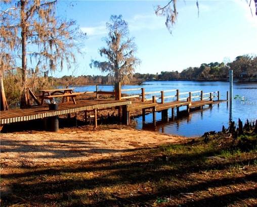 1195 Piney Woods , Osteen, FL - USA (photo 3)