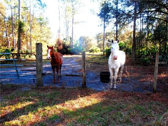 1195 Piney Woods , Osteen, FL - USA (photo 4)