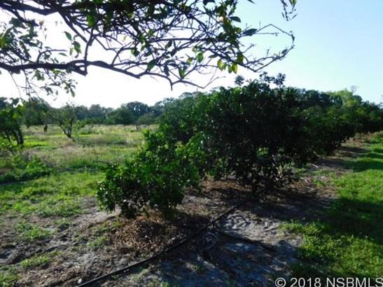 155 Elleanore St , Oak Hill, FL - USA (photo 4)