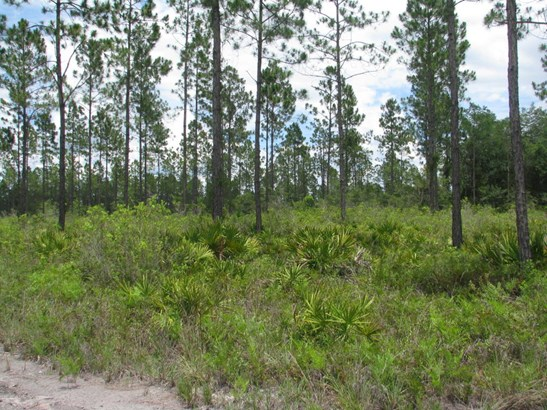 0 Breadcrumb 1177 1177, Callahan, FL - USA (photo 2)
