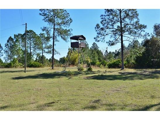29540 Fullerville , Deland, FL - USA (photo 5)