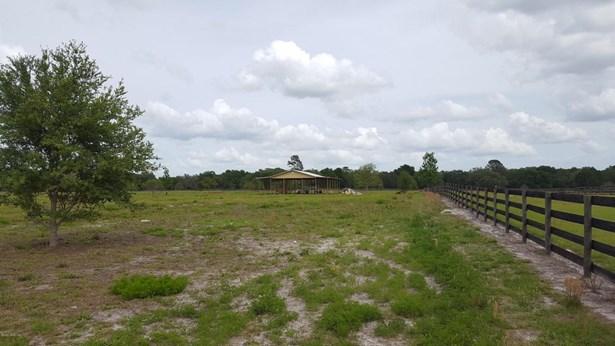 7600 167th , Morriston, FL - USA (photo 5)