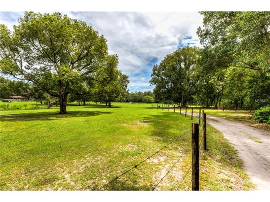 35145 Marshall , Eustis, FL - USA (photo 3)