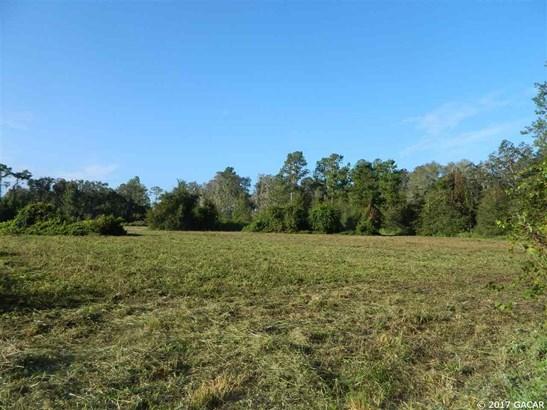 0000 225th , Hawthorne, FL - USA (photo 2)