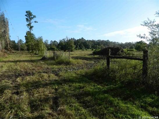 0000 225th , Hawthorne, FL - USA (photo 3)