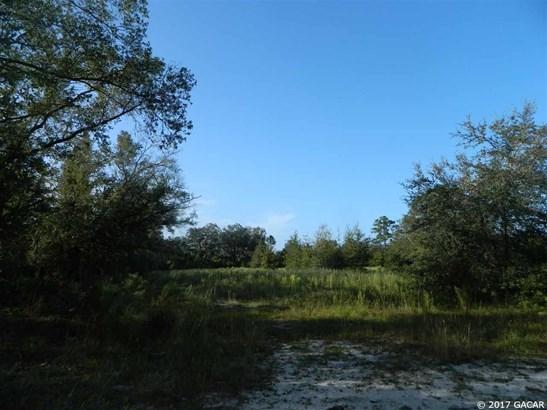0000 225th , Hawthorne, FL - USA (photo 5)