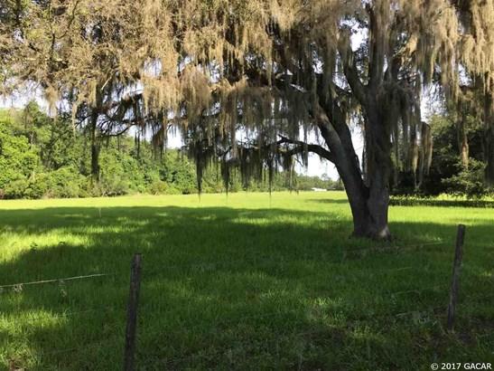 000 243rd , Hawthorne, FL - USA (photo 1)