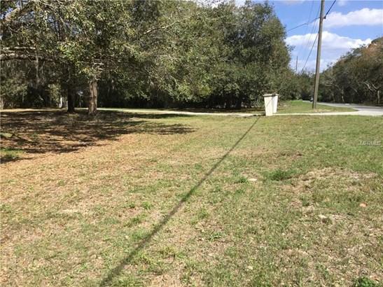 Oleander , Clermont, FL - USA (photo 4)