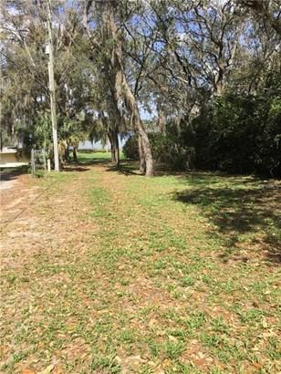 Oleander , Clermont, FL - USA (photo 5)