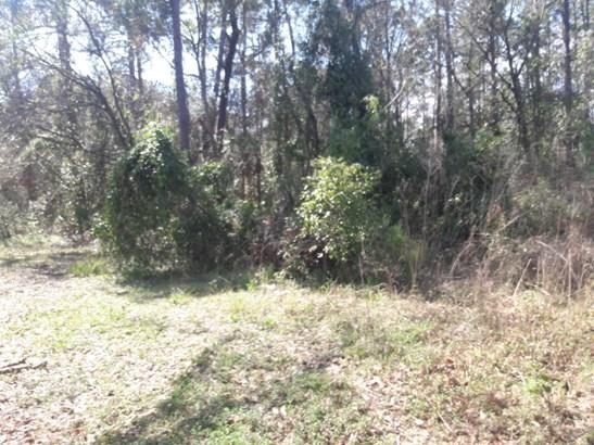 0 Hewitt , Jacksonville, FL - USA (photo 1)