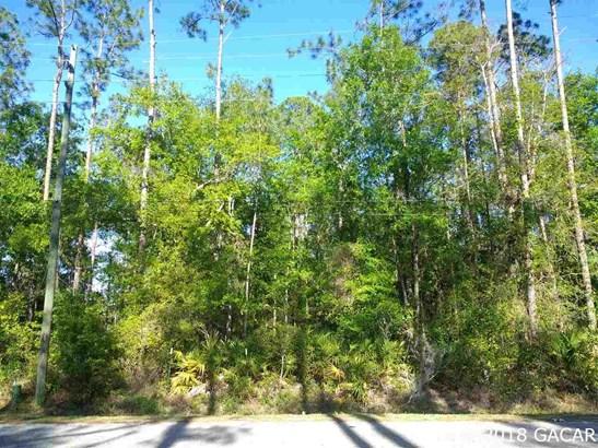 6611 18th Dr , Gainesville, FL - USA (photo 4)