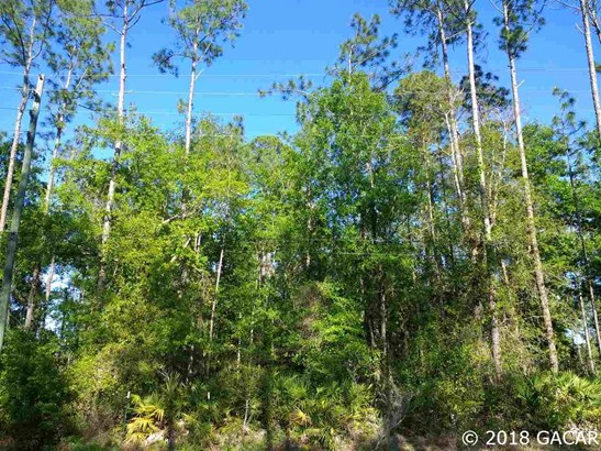 6611 18th Dr , Gainesville, FL - USA (photo 5)