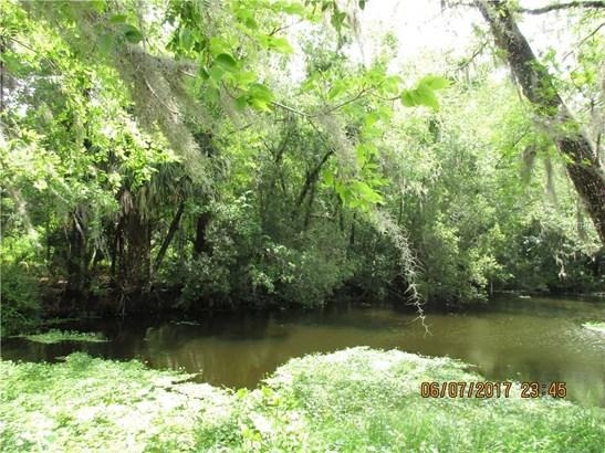 Alice , Astor, FL - USA (photo 4)