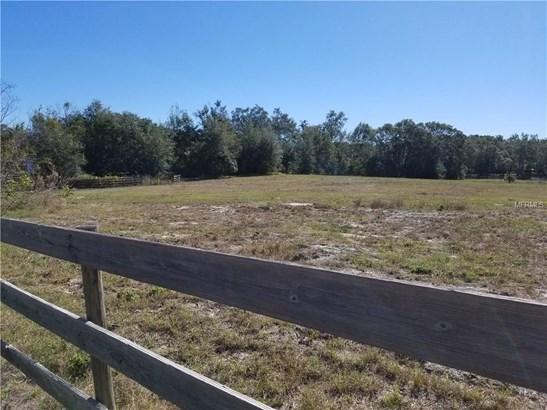Knoll Top , Eustis, FL - USA (photo 2)