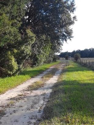 5210 Cr 305 , Bunnell, FL - USA (photo 4)
