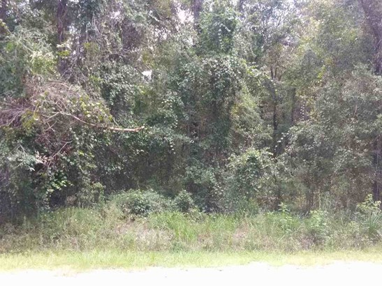 4536 Division Ave , Hastings, FL - USA (photo 1)