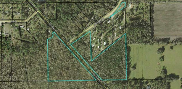 0 County Road 13 At 13a, , Elkton, FL - USA (photo 1)