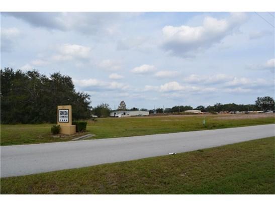 889 Anderson , Groveland, FL - USA (photo 4)