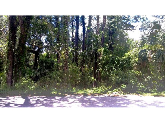 1425 Graves , Orange City, FL - USA (photo 1)